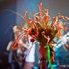 фото: Alai Oli в клубе Космонавт 01.12.11